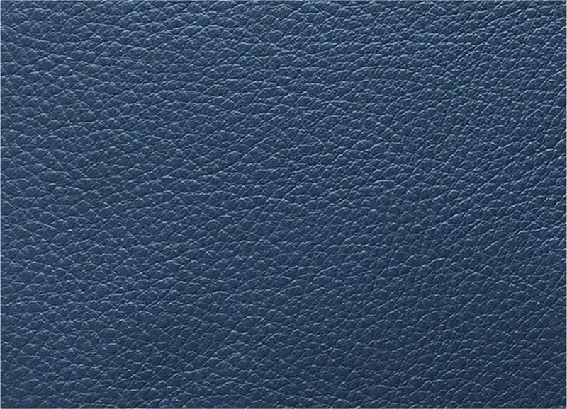 Leder Standard Blau