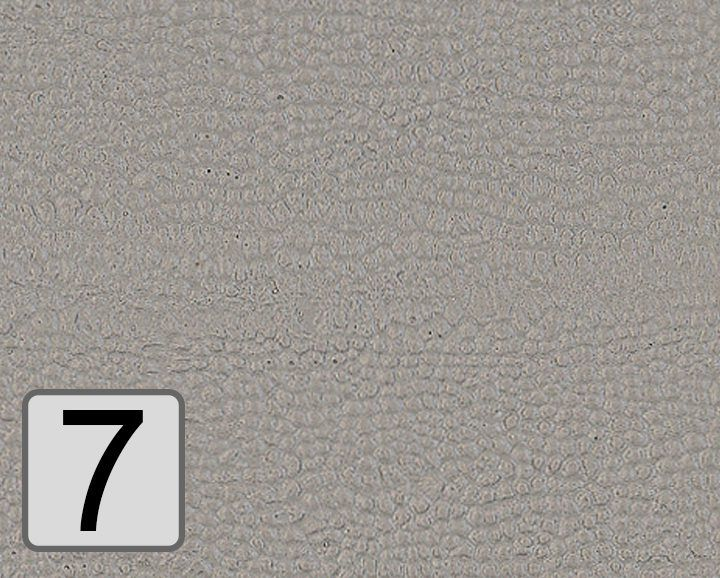 7 - Aschgrau
